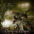 Children-of-Bodom-Relentless-Reckless-Forever-2011