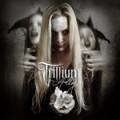 trillium-11