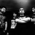 Coffins-2013
