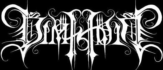 Dimholt_logo
