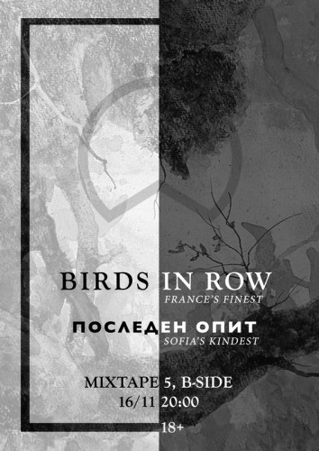 BIRDS-IN-ROW-poster