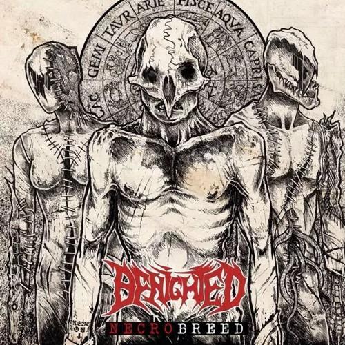 benighted-2017-necrobreed