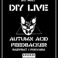 autumn acid live 2017