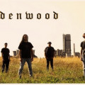 oldenwood_band