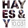 HAYES&Y70x100