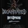 Decapitated, HATESPHERE и THYDISEASE