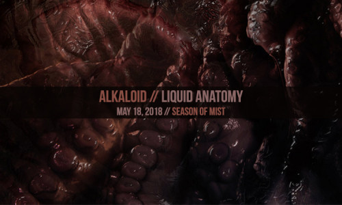 Alkaloid-LiquidAnatomy-ReviewBanner