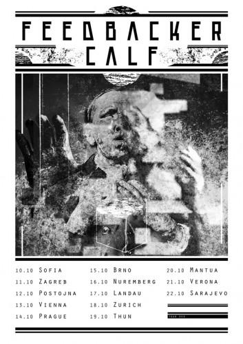feedbacker calf tour poster
