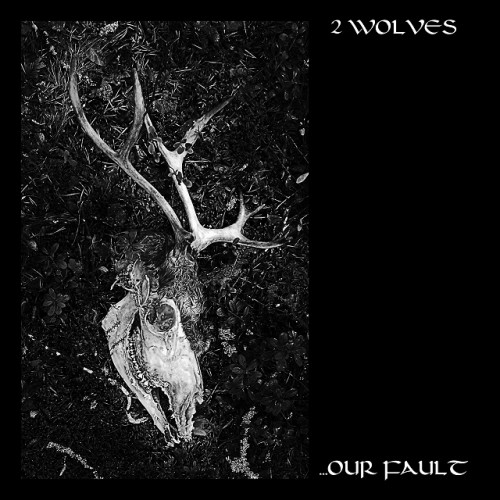 2_wolves-our_fault640