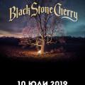 Black Stone Cherry BSC20190710BG (2)