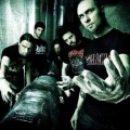 aborted - 2010