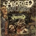 Aborted - Global Flatline single