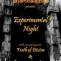 experimental night