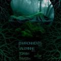 Environments-Valerinne1
