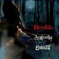 bendida - plakat_8ball