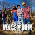 voice of ruin band