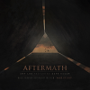 Aftermath Amy Lee Evanescence