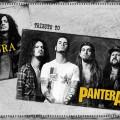 pantera sepultura tribute 020415