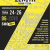 Poster zenith fest