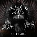 blackmetalnight