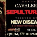 cavalera - roots before party