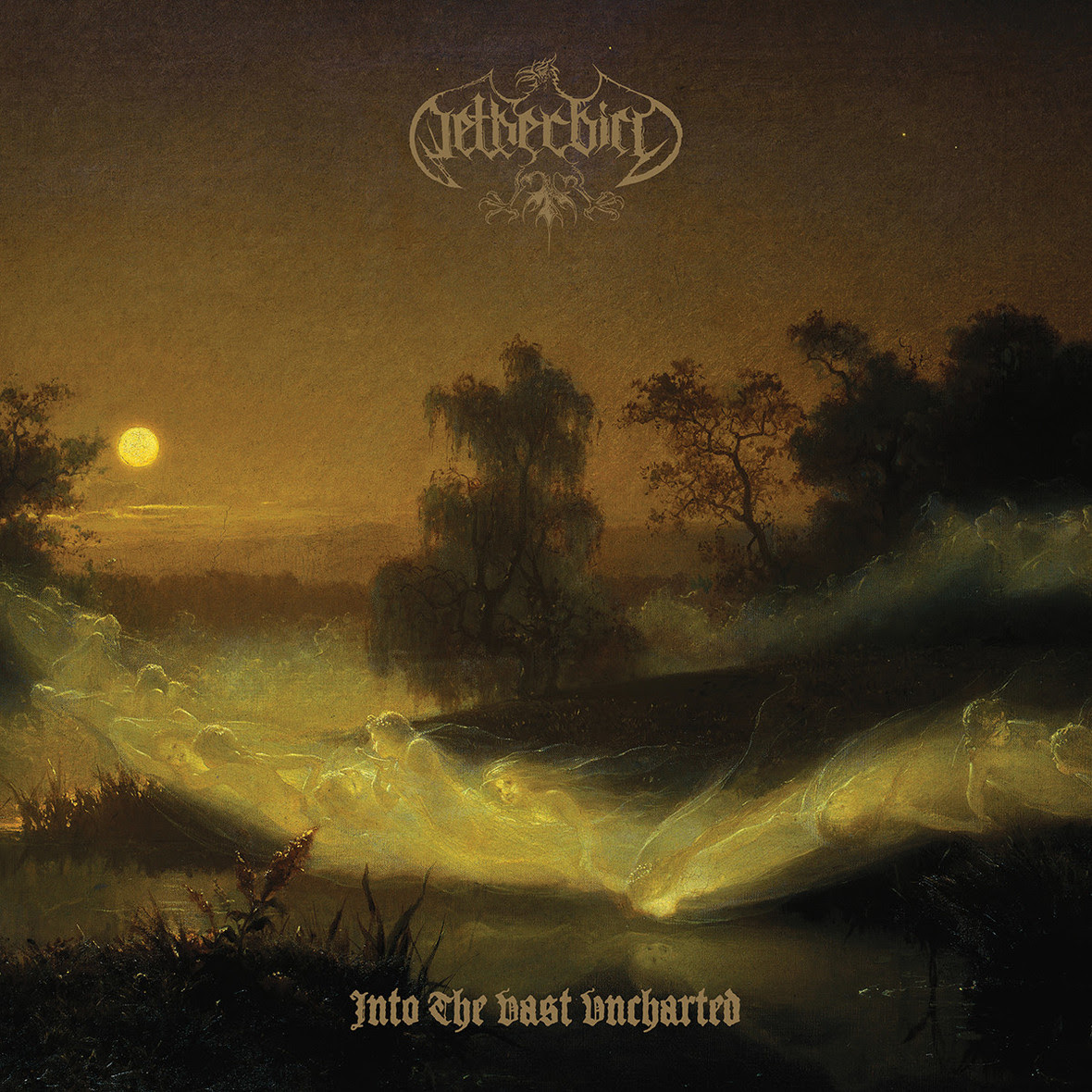 netherbird-cover