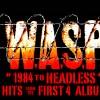 wasp-tour-2020